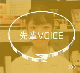 先輩VOICE